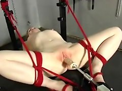 Fuck Machine & Sex Toy Torture