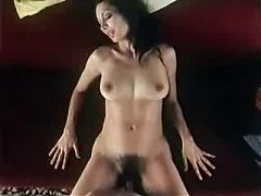Vintage Porn Hoffman And Son Full Version